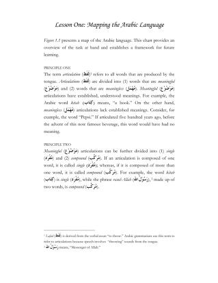 01 mapping the arabic language.pdf