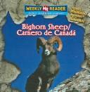 Download Bighorn sheep =