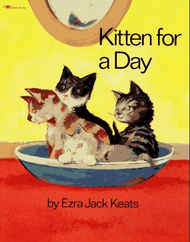 Download Kitten for a day